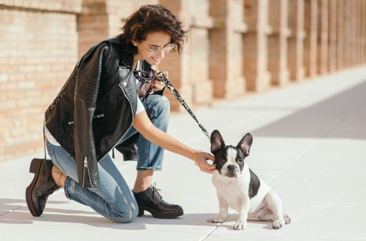 brott-barcelona-charlie-the-dog-french-bulldog-styleinlima-BROTT-FW2015-QuerolM6