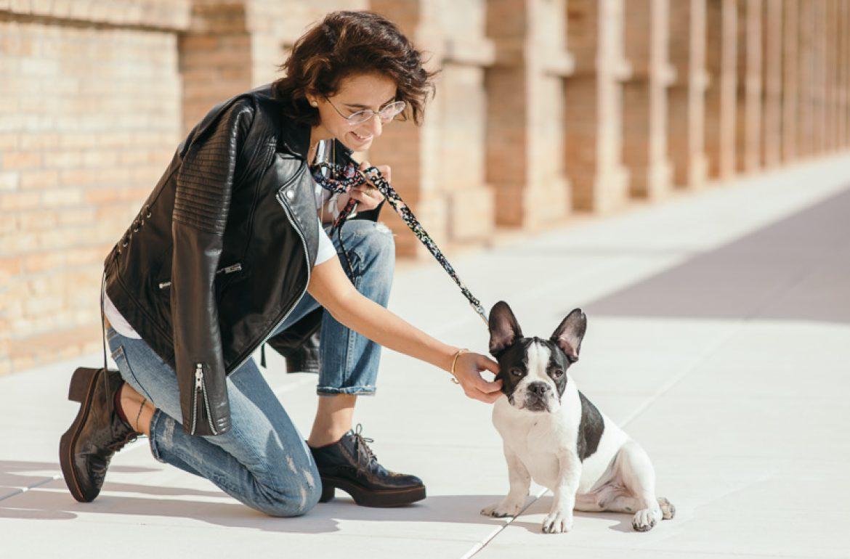 brott-barcelona-charlie-the-dog-french-bulldog-styleinlima-BROTT-FW2015-QuerolM6